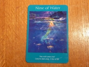 Nine of Water Tarot Card - Your Wish Comes True!