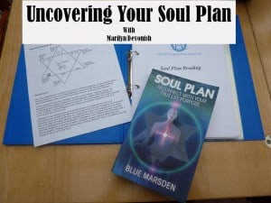 Soul Plan Reports by Marilyn Devonish